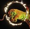 Цирки в Воткинске